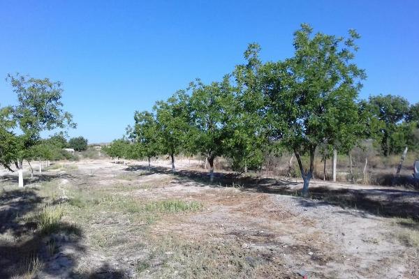 Foto de terreno habitacional en venta en  , parras, parras, coahuila de zaragoza, 8070358 No. 05