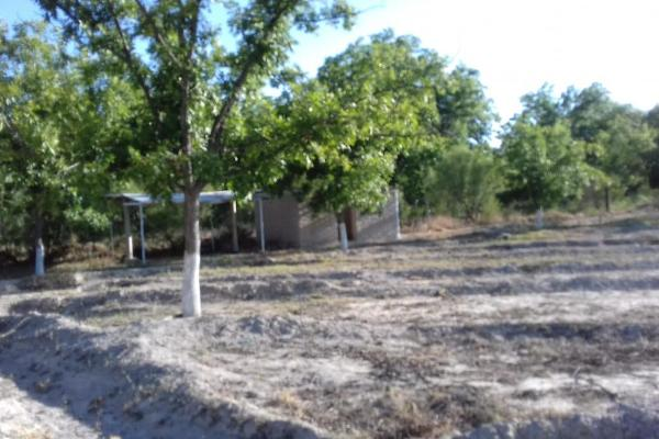 Foto de terreno habitacional en venta en  , parras, parras, coahuila de zaragoza, 8070358 No. 14
