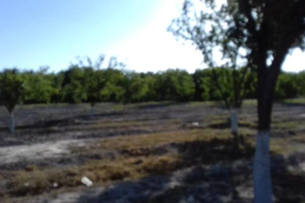 Foto de terreno habitacional en venta en  , parras, parras, coahuila de zaragoza, 8070358 No. 15