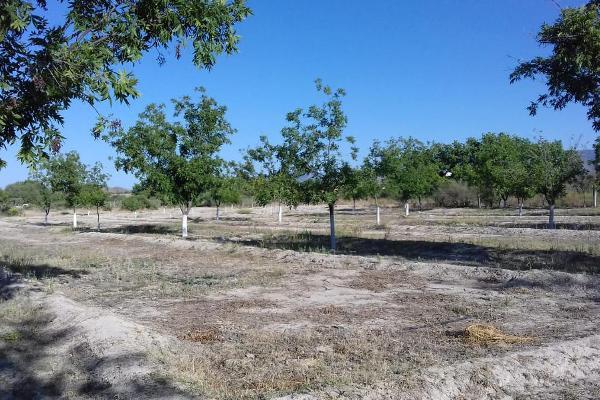 Foto de terreno habitacional en venta en  , parras, parras, coahuila de zaragoza, 8070358 No. 17