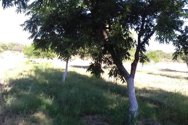Foto de terreno habitacional en venta en  , parras, parras, coahuila de zaragoza, 8070358 No. 20