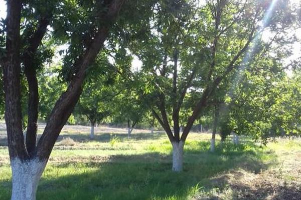 Foto de terreno habitacional en venta en  , parras, parras, coahuila de zaragoza, 8070358 No. 21