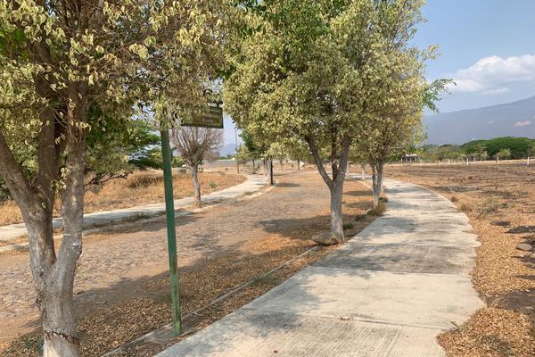 Foto de terreno habitacional en venta en paseo de las bugambilias s/n lote 1 , comala, comala, colima, 21428186 No. 03