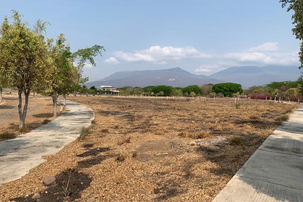 Foto de terreno habitacional en venta en paseo de las bugambilias s/n lote 1 , comala, comala, colima, 21428186 No. 04