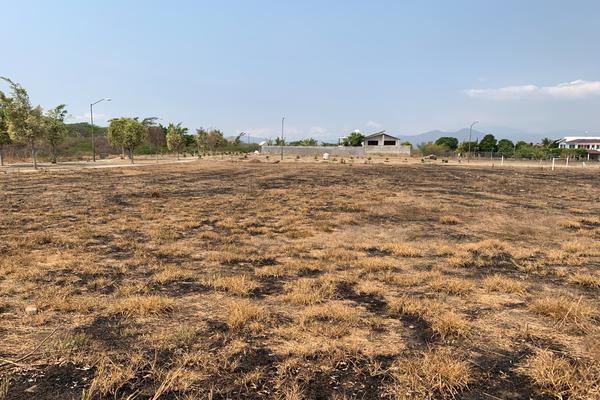 Foto de terreno habitacional en venta en paseo de las bugambilias s/n lote 1 , comala, comala, colima, 21428186 No. 05