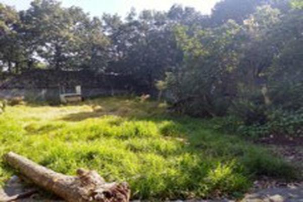 Foto de casa en venta en paseo de las flores, primavera, la, ciudad de méxico, cdmx, méxico , la primavera, tlalpan, df / cdmx, 14363136 No. 04