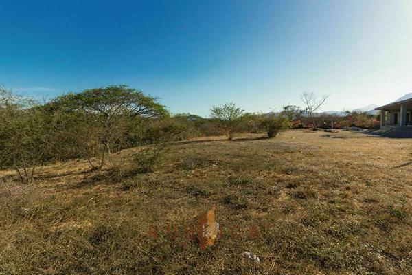 Foto de terreno habitacional en venta en paseo de las orquídeas , comala, comala, colima, 20342420 No. 05