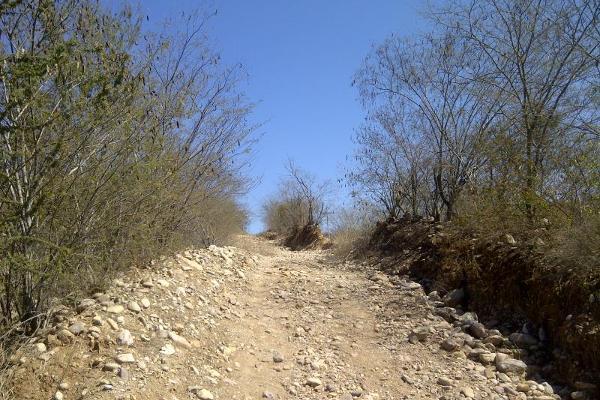 Foto de terreno habitacional en venta en paseo de los olivos sin número, la pitahayita, culiacán, sinaloa, 3535831 No. 02