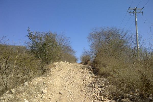 Foto de terreno habitacional en venta en paseo de los olivos sin número, la pitahayita, culiacán, sinaloa, 3535831 No. 07