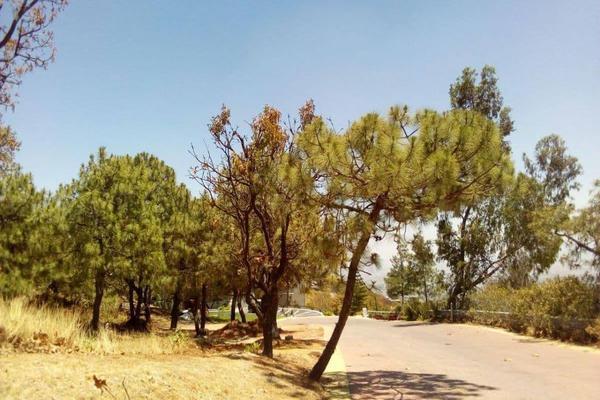 Foto de terreno habitacional en venta en paseo del cielo 389, cofradia de la luz, tlajomulco de zúñiga, jalisco, 15214142 No. 03