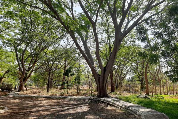 Foto de terreno habitacional en venta en paseó del fresno , campestre comala, comala, colima, 20040397 No. 01
