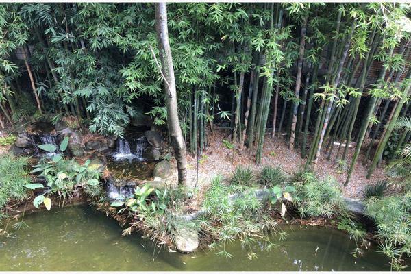 Foto de departamento en venta en  , paseos del río, emiliano zapata, morelos, 9206878 No. 03
