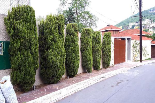 Foto de casa en renta en  , pedregal del valle, san pedro garza garcía, nuevo león, 20291608 No. 20