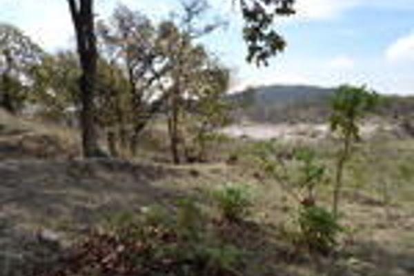 Foto de terreno habitacional en venta en pegado al bosque primavera , bosques de santa anita, tlajomulco de zúñiga, jalisco, 3033926 No. 02