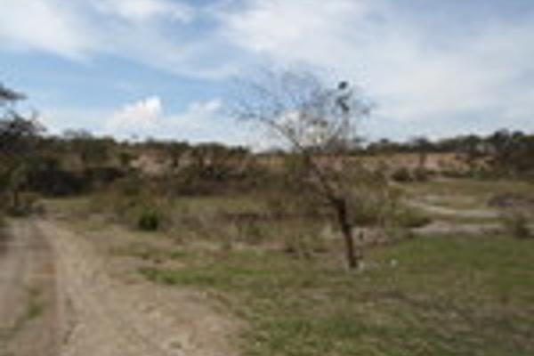 Foto de terreno habitacional en venta en pegado al bosque primavera , bosques de santa anita, tlajomulco de zúñiga, jalisco, 3033926 No. 04