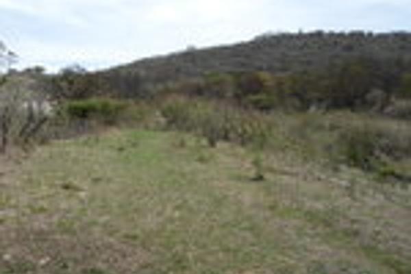 Foto de terreno habitacional en venta en pegado al bosque primavera , bosques de santa anita, tlajomulco de zúñiga, jalisco, 3033926 No. 05