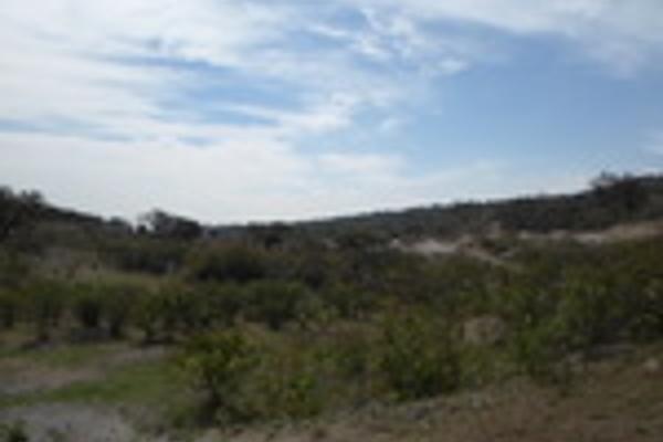 Foto de terreno habitacional en venta en pegado al bosque primavera , bosques de santa anita, tlajomulco de zúñiga, jalisco, 3033926 No. 10