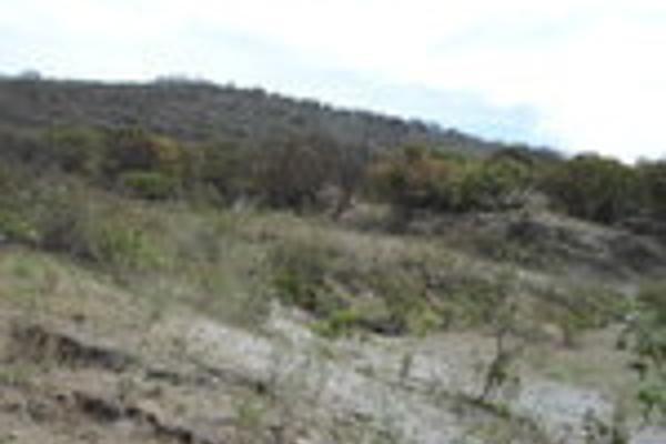 Foto de terreno habitacional en venta en pegado al bosque primavera , bosques de santa anita, tlajomulco de zúñiga, jalisco, 3033926 No. 11