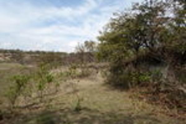 Foto de terreno habitacional en venta en pegado al bosque primavera , bosques de santa anita, tlajomulco de zúñiga, jalisco, 3033926 No. 13