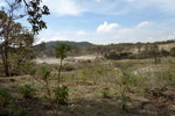 Foto de terreno habitacional en venta en pegado al bosque primavera , bosques de santa anita, tlajomulco de zúñiga, jalisco, 3033926 No. 14