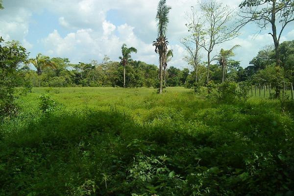 Foto de terreno comercial en venta en  , pejelagartero, huimanguillo, tabasco, 1122585 No. 04