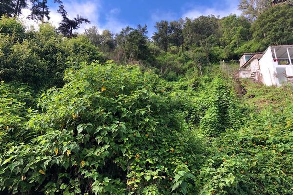 Foto de terreno habitacional en venta en  , peña blanca, valle de bravo, méxico, 18380348 No. 06