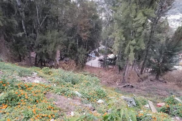 Foto de terreno habitacional en venta en  , peña blanca, valle de bravo, méxico, 18799929 No. 02