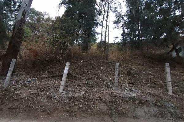 Foto de terreno habitacional en venta en  , peña blanca, valle de bravo, méxico, 18799929 No. 04