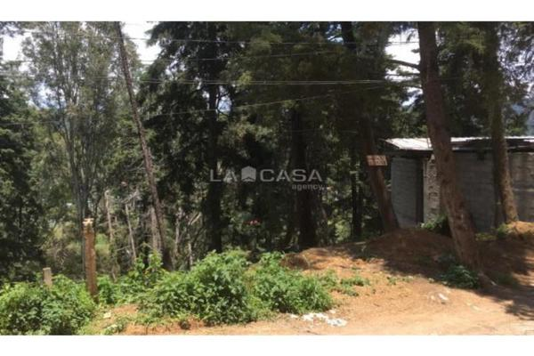 Foto de terreno habitacional en venta en  , peña blanca, valle de bravo, méxico, 8979902 No. 07