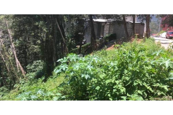 Foto de terreno habitacional en venta en  , peña blanca, valle de bravo, méxico, 8979902 No. 08