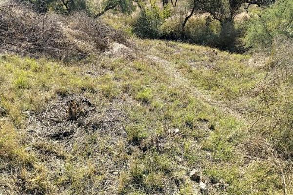 Foto de terreno habitacional en venta en  , san josé de la cruz, san miguel de allende, guanajuato, 6193817 No. 06