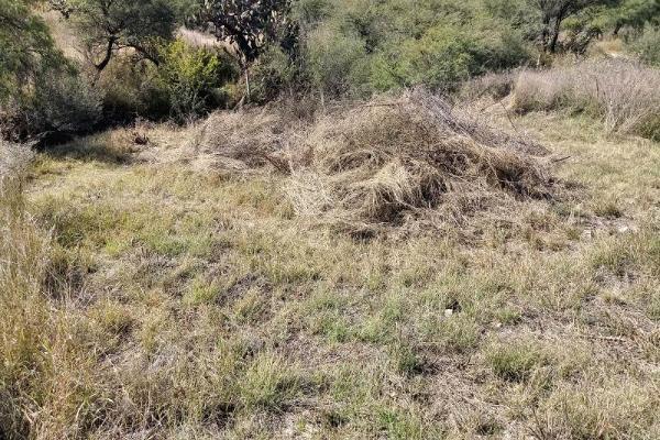Foto de terreno habitacional en venta en  , san josé de la cruz, san miguel de allende, guanajuato, 6193817 No. 07