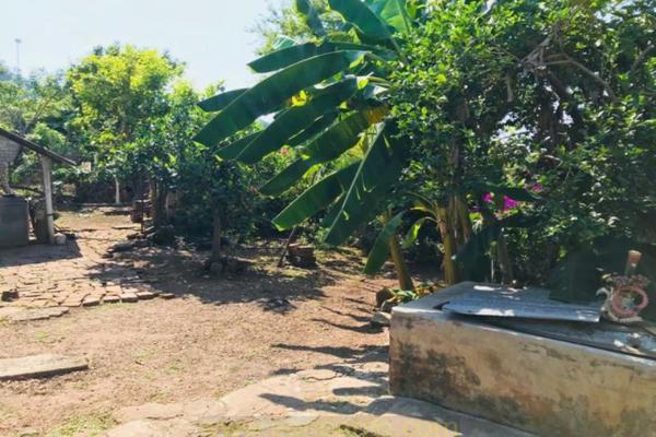 Foto de casa en venta en  , peñitas, tuxpan, nayarit, 5880057 No. 04