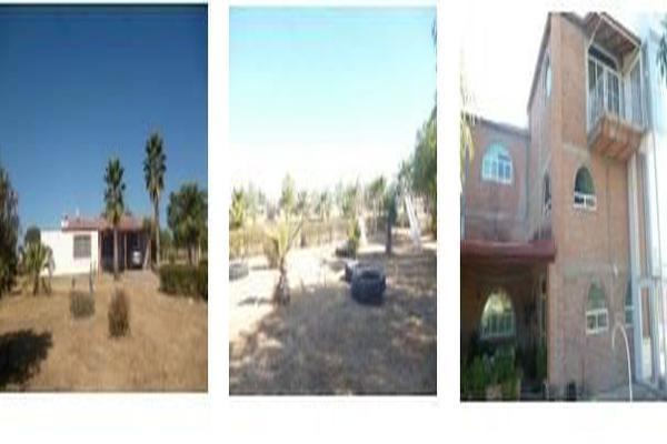 Foto de rancho en venta en  , peñuelas, aguascalientes, aguascalientes, 7178427 No. 08