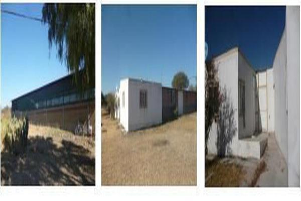 Foto de rancho en venta en  , peñuelas, aguascalientes, aguascalientes, 7178427 No. 09