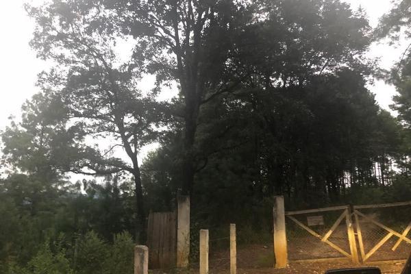 Foto de terreno habitacional en venta en periférico oriente , san nicolás, san cristóbal de las casas, chiapas, 6210045 No. 02