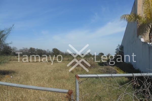 Foto de terreno comercial en venta en  , pesquería, pesquería, nuevo león, 5394386 No. 03