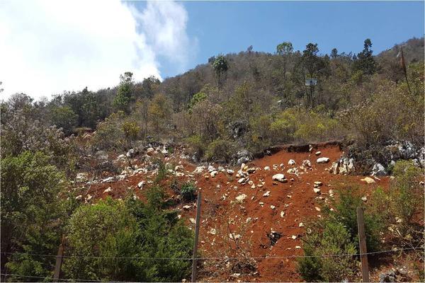 Foto de terreno comercial en venta en pieda cola de pato , del santuario, san cristóbal de las casas, chiapas, 5949622 No. 02