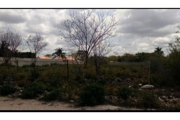 Foto de rancho en venta en  , plan de ayala, mérida, yucatán, 9157729 No. 03