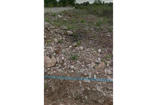 Foto de rancho en venta en  , plan de ayala, mérida, yucatán, 9157729 No. 05