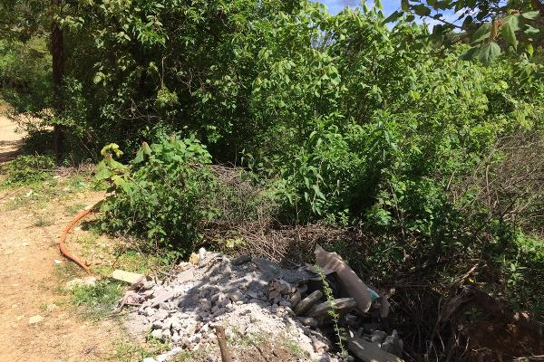 Foto de terreno habitacional en venta en plan de ayala , san felipe del agua 1, oaxaca de juárez, oaxaca, 3423538 No. 10