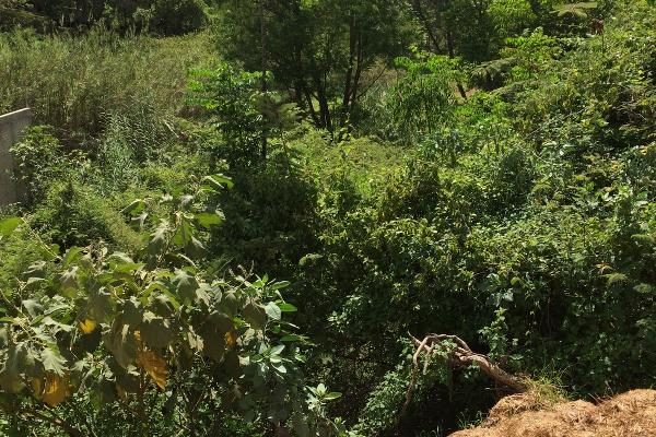 Foto de terreno habitacional en venta en plan de ayala , san felipe del agua 1, oaxaca de juárez, oaxaca, 3423538 No. 22