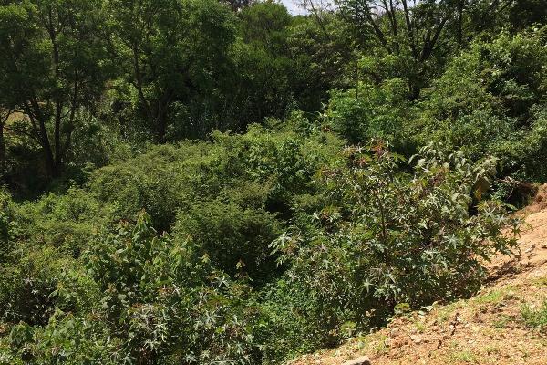 Foto de terreno habitacional en venta en plan de ayala , san felipe del agua 1, oaxaca de juárez, oaxaca, 3423538 No. 25