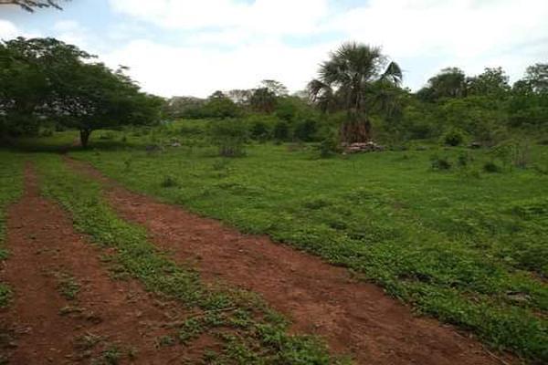 Foto de terreno habitacional en venta en plan de ayala s/n , pucte, othón p. blanco, quintana roo, 18628294 No. 02