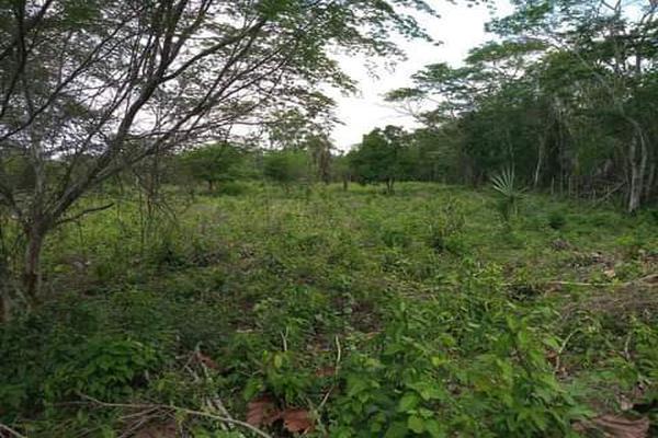 Foto de terreno habitacional en venta en plan de ayala s/n , pucte, othón p. blanco, quintana roo, 18628294 No. 04
