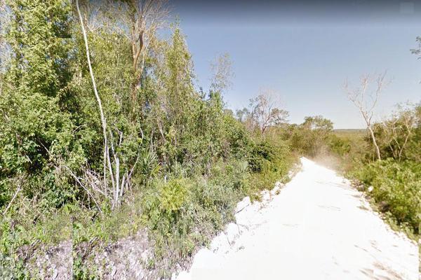 Foto de terreno habitacional en venta en  , plan de la noria, josé maría morelos, quintana roo, 18488788 No. 02