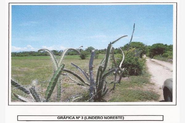 Foto de terreno comercial en venta en  , plan de los amates, acapulco de juárez, guerrero, 7154921 No. 05