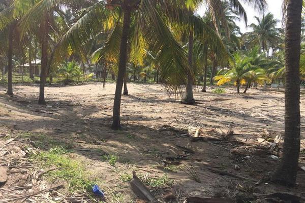 Foto de terreno comercial en venta en  , playa azul, centla, tabasco, 7160305 No. 03