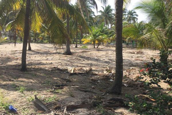 Foto de terreno comercial en venta en  , playa azul, centla, tabasco, 7160305 No. 04
