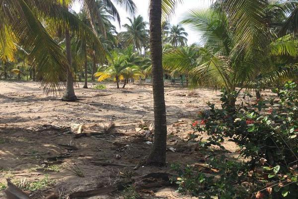 Foto de terreno comercial en venta en  , playa azul, centla, tabasco, 7160305 No. 05